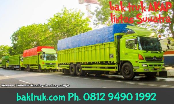Bak-truk-akap-lintas-sumatra-hendra-akatsuki-10